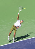 Professional Tennis Player. Royalty Free Stock Photos
