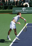 Professional Tennis Player. Royalty Free Stock Images
