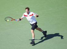 Professional tennis player Andy Murray during  quarterfinal match at US Open 2013 against  Stanislas Wawrinka Stock Image