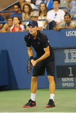Professional tennis player David Goffin during US Open 2014 third round match Royalty Free Stock Photo