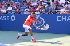 Professional tennis player Jo-Wilfried Tsonga during US Open 2014 first round match Stock Photo