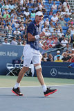 Professional tennis player John Isner of United States celebrates victory after second round match at US Open 2015 Stock Photography