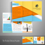 Professional trifold brochure, catalog and flyer for business. Stock Photography