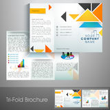 Professional trifold brochure, catalog and flyer for business. Stock Images