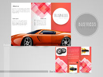 Professional trifold brochure or flyer. Royalty Free Stock Photos