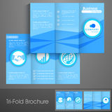 Professional trifold brochure, template or flyer for business. Professional trifold brochure, catalog and flyer template for business purpose Royalty Free Stock Image