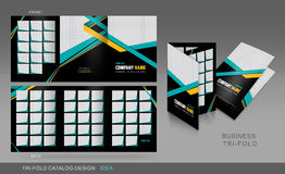 Professional trifold catalogue, brochure and flyer template for Royalty Free Stock Images