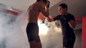 Professional two mma athletes are fighting. 4K stock video