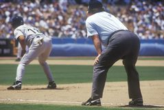 Professional Umpire watching Baseball game. Dodger Stadium, Los Angeles, CA Royalty Free Stock Image
