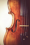 Professional violin background close-up Royalty Free Stock Photo