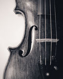 Professional violin close-up Royalty Free Stock Images