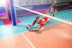 Professional volleyball player flying in action on the grand arena Stock Photography