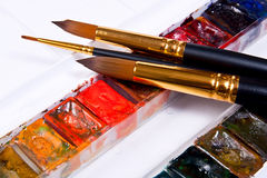 Professional watercolor paints in box with brushes. Stock Image