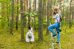 Professional wedding photographer using stepladder to make pictures of the bride stock photos