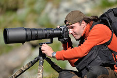 Professional wildlife photographer. Using telephoto lens with tripod and ballhead camera support royalty free stock photography