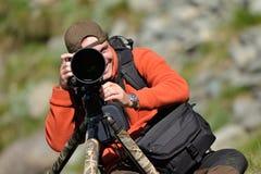 Professional wildlife photographer. Using telephoto lens with tripod and ballhead camera support Stock Image
