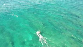 Professional windsurfer gliding in calm turquoise blue ocean wave water seascape, extreme summer sport in 4k aerial view. Professional windsurfer gliding in calm stock video footage