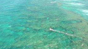 Professional windsurfer gliding in calm waves of turquoise blue ocean water Hawaiian seascape in 4k aerial drone shot. Professional windsurfer gliding in calm stock footage