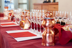 Professional winetasting event Stock Photography