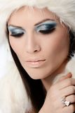 Professional winter makeup Stock Images