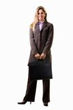 Professional woman Stock Image