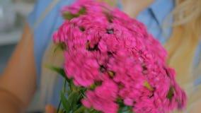 Professional florist preparing pink turkish carnation for bouquet at workshop. Professional woman floral artist, florist preparing flowers - pink turkish stock video