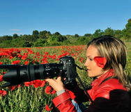 Professional woman photographer. In a field with poppies Royalty Free Stock Images