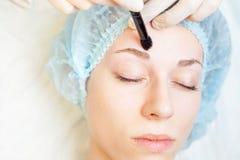 Professional woman at spa beauty salon doing correction eyebrow Royalty Free Stock Image