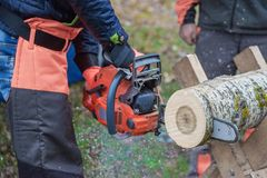 Professional woodcutter saws a log Stock Photo