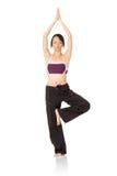 Professional yoga woman Royalty Free Stock Photo