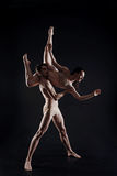 Professional young gymnasts dancing in the studio Stock Image