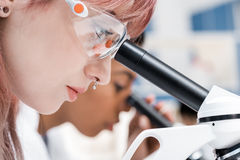 Professional young scientists working with microscopes in chemical laboratory. Side view of professional young scientists working with microscopes in chemical Royalty Free Stock Photos
