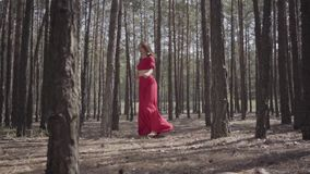 Professional young woman in red dress dancing in the forest. Beautiful lady touching a tree. Concept of female stock video footage