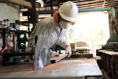 Professional young worker in white uniform and safety equipment cutting a piece of wood on table saw machine in carpentry factory. Professional young worker in Royalty Free Stock Image