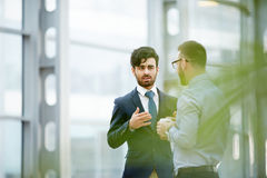 Professionals communicating Stock Photos