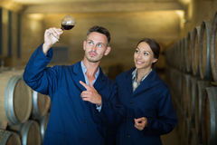 Professionals in uniform looking at wine sample in glass Royalty Free Stock Photos