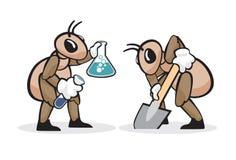 Professione 7 della formica Immagine Stock Libera da Diritti
