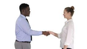 Professioneel bedrijfsmensenhandenschudden op witte achtergrond stock foto's