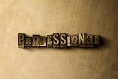 PROFESSIONEEL - close-up van grungy wijnoogst gezet woord op metaalachtergrond vector illustratie