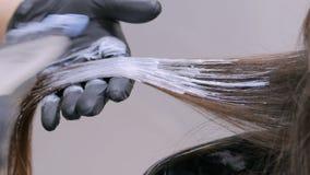 Professioneel kapper kleurend haar van vrouwencliënt bij studio stock footage