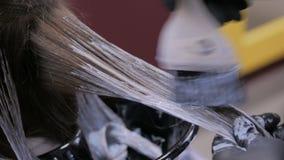 Professioneel kapper kleurend haar van vrouwencliënt bij studio stock videobeelden