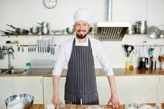 Professionele bakker stock foto's