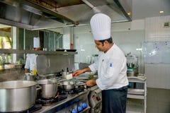 Professionele chef-kok kokende schotel bij de keuken stock foto