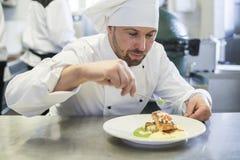 Professionele chef-kok op het werk royalty-vrije stock foto's