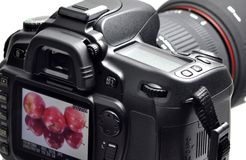 Professionele digitale camera Stock Afbeelding