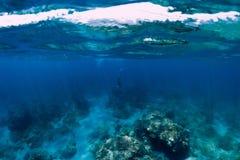 Professionele freediver duikt aan diep royalty-vrije stock afbeeldingen