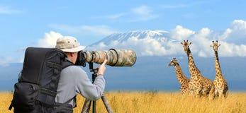 Professionele het wildfotograaf stock afbeelding