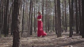 Professionele jonge vrouw in rode kleding die in de bos Mooie dame wat betreft een boom dansen Concept wijfje stock videobeelden