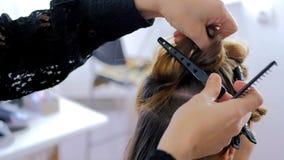Professionele kapper die kapsel voor jonge mooie vrouw doen Stock Foto's