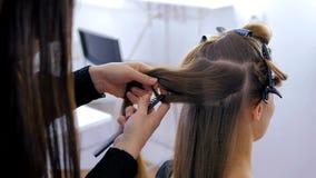 Professionele kapper die kapsel voor jonge mooie vrouw doen Stock Fotografie